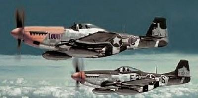 Tamiya 1/48 P-51D Mustang