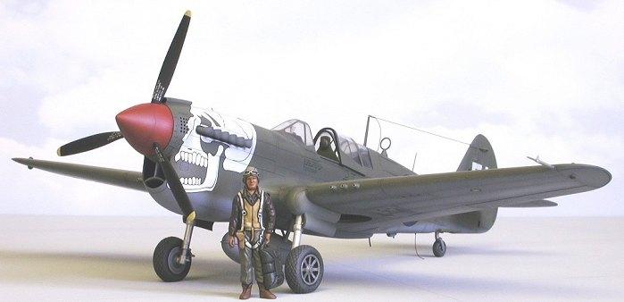 Mauve 1/48 P-40N Warhawk by Roger Jackson